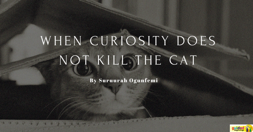 When curiosity does not kill the cat